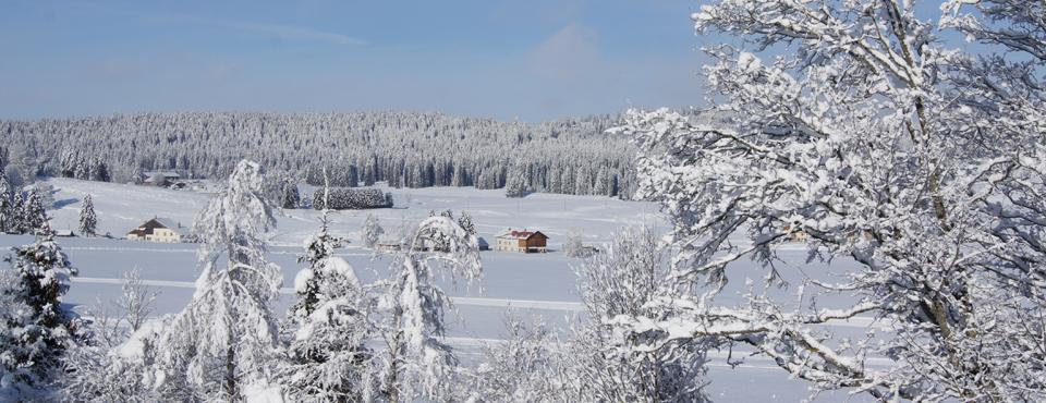 hiver-2015-3