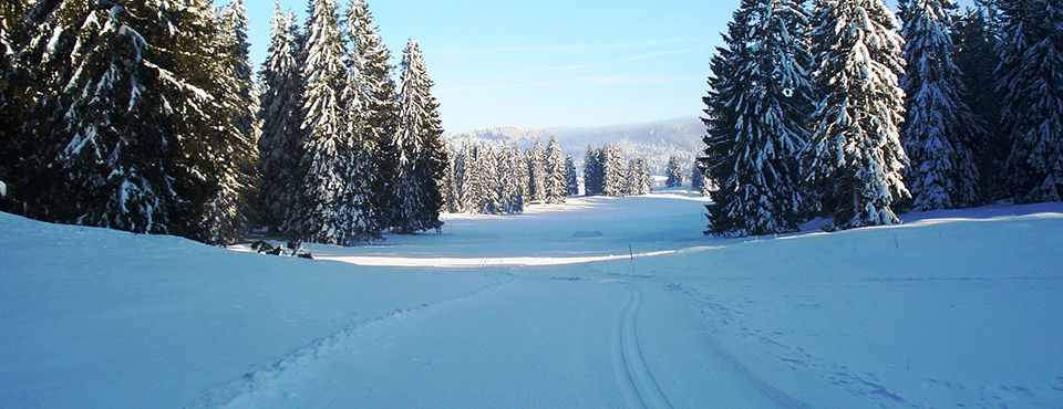 Piste ski de fond - plateau des granges